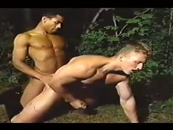 Hot Sex in the Forest